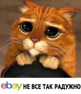 ebay-radygno